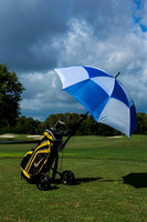 Golf umbrella-048