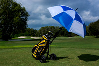 Golf umbrella-050